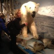Royal and Ancient Polar Bear Society museum, Hammerfest, Norway
