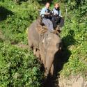 Chiang Mai Hill tribe Hike - Chiang Dao