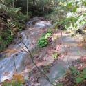 Random Cascade