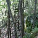 Cliff overhang
